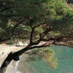 Scorcio sulla spiaggia di Paraggi