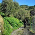 Imbocco del sentiero per il parco di Ciapà