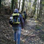 sul sentiero per la strada megalitica di Alpicella