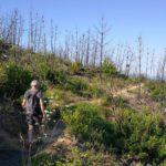 Da Casaggiori a Punta Baffe - sentiero