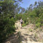 Salendo da Monterosso a Punta Mesco