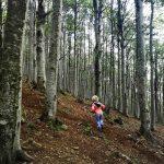 Bimba nella foresta del Monte Penna