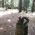 Scoiattolo ligneo al museo del bosco presso il Lago delle Lame