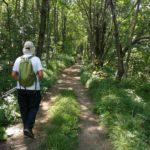 Sentiero per il Lago delle Lame