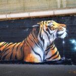 Graffito tigre