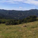 Panorama dal Monte Orocco
