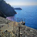 Il sentiero da Framura a Porto Pidocchio