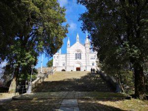 Il viale di accesso al Santuario di Montallegro tra lecci secolari