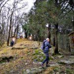 Via crucis - Montallegro - Rapallo