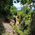 Da Campiglia a Portovenere - sentiero nella macchia