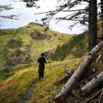 verso il Monte Castellaro