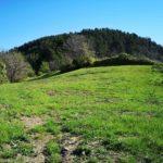 Monte Dragnone - prato a Pieve di Zignago