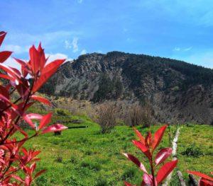 Il Monte Dragnone visto dalla piana di Vezzanelli