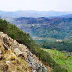 Monte Dragnone - profilo della pineta