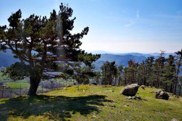 Monte Dragnone - panorama dalla vetta