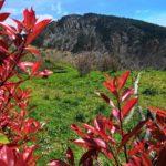 Monte Dragnone