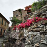 Muri e rocce in fiore a Nascio