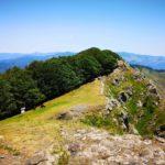 panorama dalla Cappelletta del Ramaceto con cavalli selvaggi al pascolo