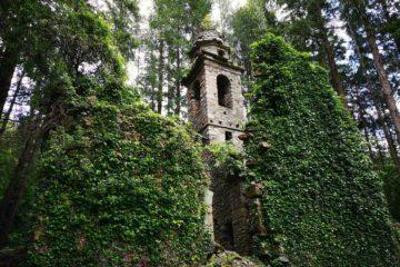 Il campanile immerso nella vegetazione di San Martino di Licciorno