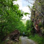 Mulattiera tra le rocce di diaspro rosso in Valle Lagorara
