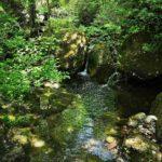 Rio Lagorara nei pressi del sito archeologico