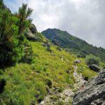 Monte Rama visto da Fontanaccia