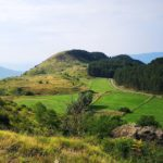 La Pineta di Suvero e i prati visti dall'imbocco dell'Alta Via