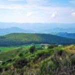 La Pineta di Suvero vista dal Monte Coppigliolo
