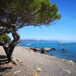 La spiaggia del Pozzale e sullo sfondo le Alpi Apuane