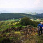 Scendendo dal Monte Coppigliolo con vista sulla Pineta di Suvero