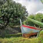 Barca a Chiariventi