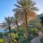 Il sentiero del Beodo a Bordighera