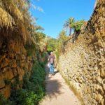 Tra i muri a secco del sentiero del Beodo