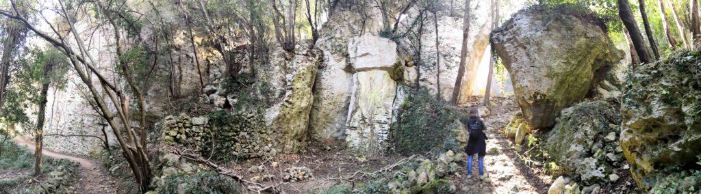 La foresta incantata lungo il sentiero per la grotta Strapatente