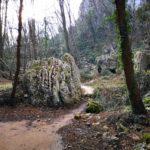 Sentiero tra le rocce a Boragni