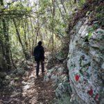 Arma Strapatente - sentiero nel bosco