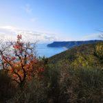 Vista di Capo Noli dal sentiero di Bergeggi