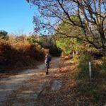 Imbocco del sentiero di Bergeggi