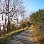 Sentiero botanico sopra Bergeggi
