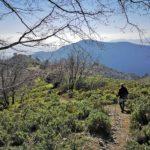 Discesa dal Monte Croce