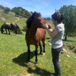 Marty coccola un cavallino sul Monte Acuto