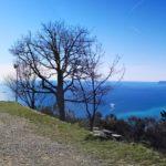 Vista della costa di Ponente dalla terrazza del Santuario di Varazze
