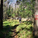 Sentiero in Valle Ercea