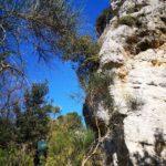 Costeggiando Rocca Carpanea