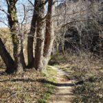 Sentiero per Pian Marino