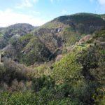 Valle del Rio Gambaro