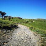La carrareccia verso il Monte Penello