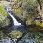 Cascatella sul Rio Gambaro
