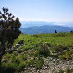 Panorama da Colle Gandolfi