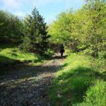 Il sentiero dalla Cappelletta verso il Forte